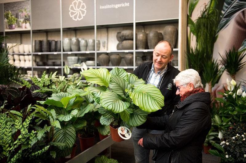 De mooiste tuin en kamer planten koopt u bij van de Lagemaat in Ede!