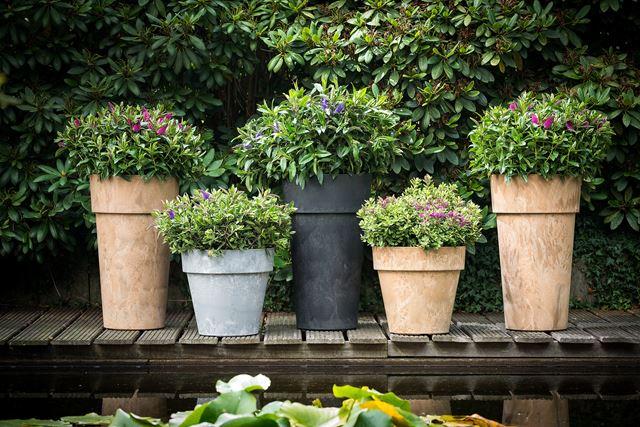 De mooiste plantenbakken voor buiten koopt u bij van de Lagemaat nabij De Klomp!